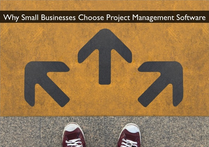 Why & How Small Businesses Choose Project Management Software